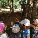 Parc Animalier de Gramat.